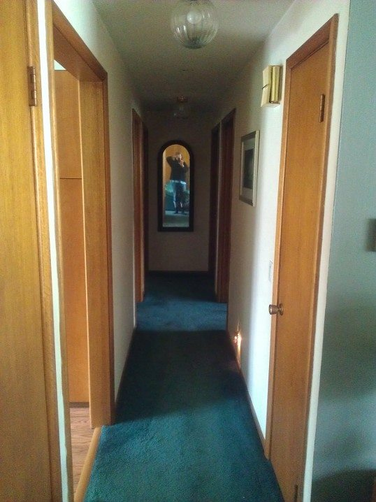 what color would look nice in my hallway, foyer, painting
