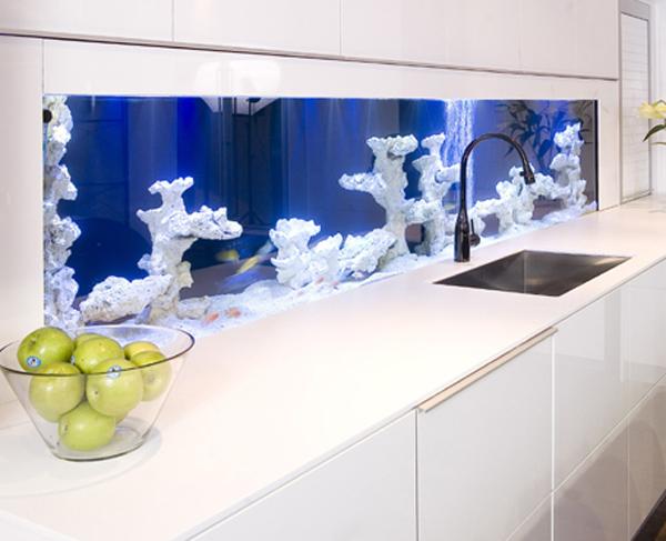 modern aquarium kitchen by darren morgan, electrical, home decor, kitchen design, lighting, pets animals