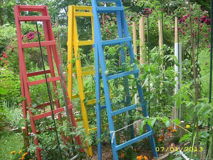 tomato cages vs tomato ladders and conserving rain water, diy, gardening, how to, painting, repurposing upcycling, Ladders after being painted I have 4 of them The 4th one is in another bed behind me