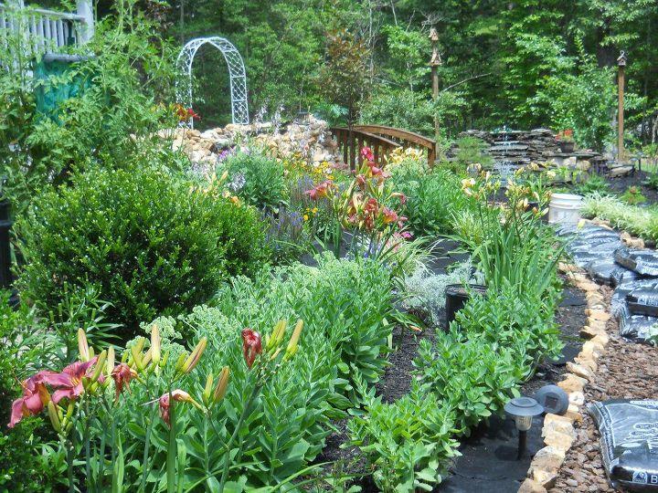the finish of the elephant ear bird bath, flowers, gardening, surrounding flower beds