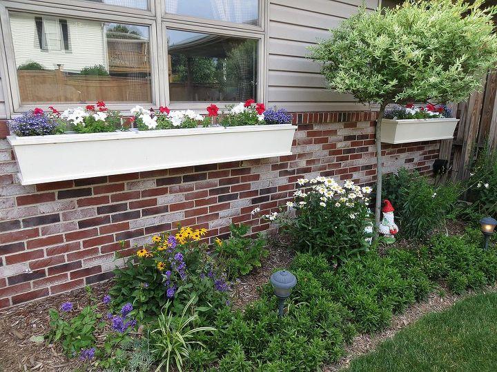 flowers around the yard, flowers, gardening, outdoor living