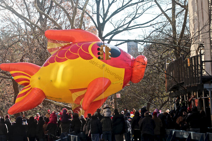 """An unidentified fish """"marches"""" (swims out of water) in Macy's 2013 Thanksgiving Parade. View Three (at CPW),"""