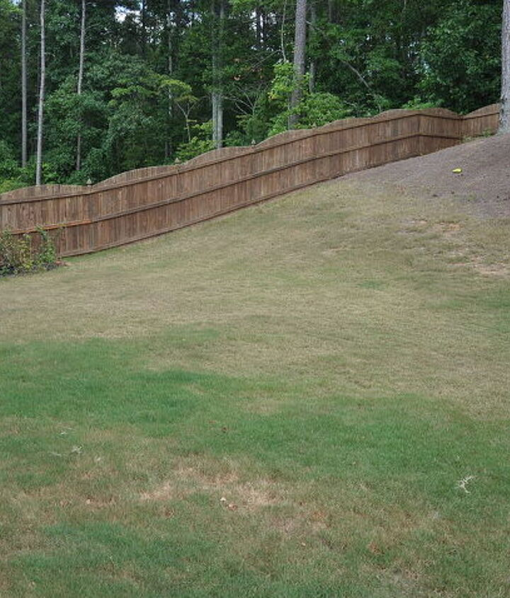 left part of yard