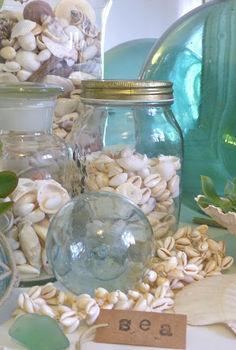 coastal decorating, home decor, succulents