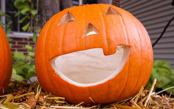 the best way to preserve pumpkins, gardening, Wet And Forget Pumpkin After 2 weeks