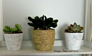 succulents in upcycled dollar store pots, flowers, gardening, succulents