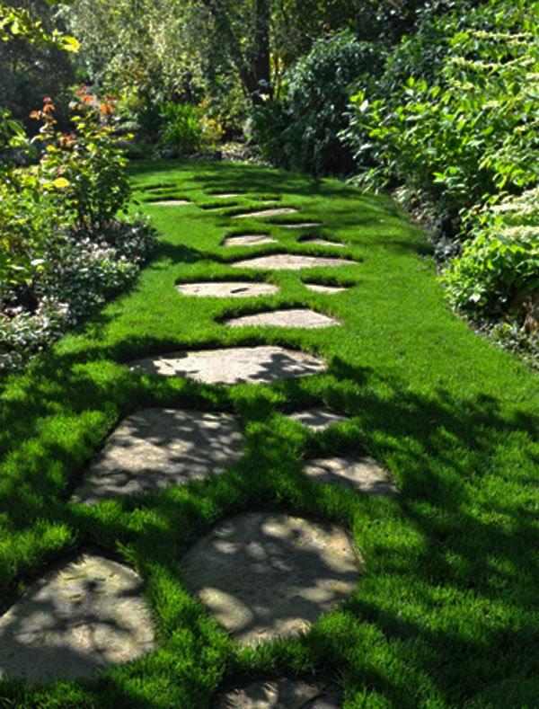 Pathways Design Ideas for Home and Garden   Hometalk