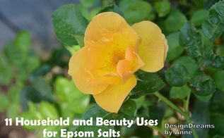 epsom salts for the home garden and natural beauty, gardening