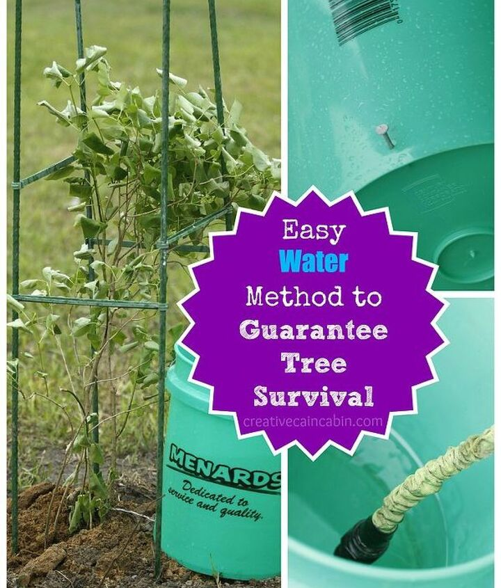 Easy water method to guarantee tree and shrub survival of new transplants