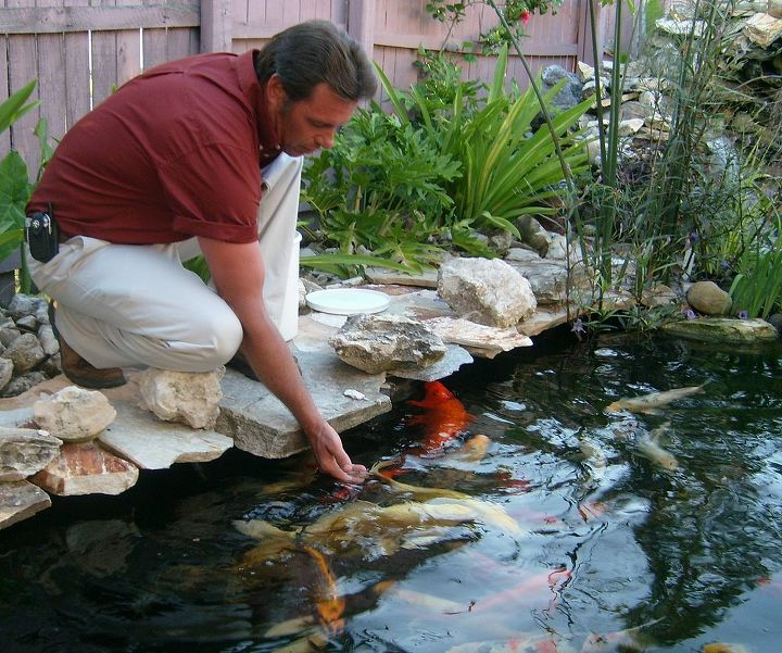 fall winter pond check list for the south, home maintenance repairs, outdoor living, ponds water features