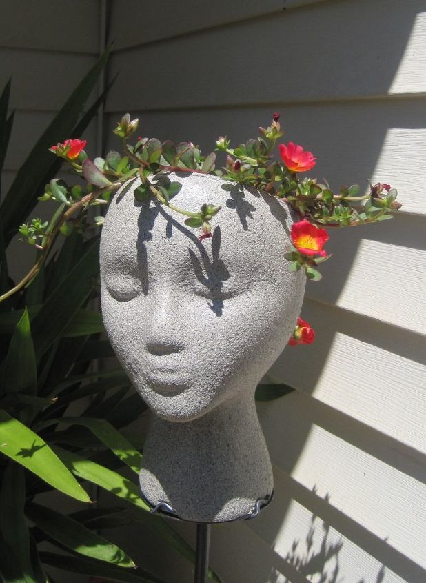 paint a face or not, gardening, painting, repurposing upcycling, This is April rose from last year