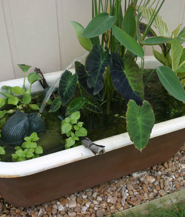 Got an old bathtub? Don't toss it ... stick it in the garden and fill it with aquatic plants and a fountain!
