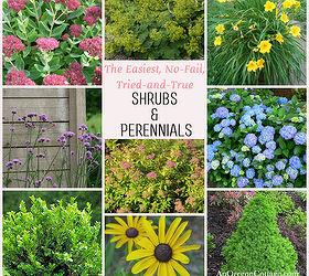 Great Tried And True Shrubs Amp Perennials, Flowers, Gardening, Hydrangea,  Perennials, The