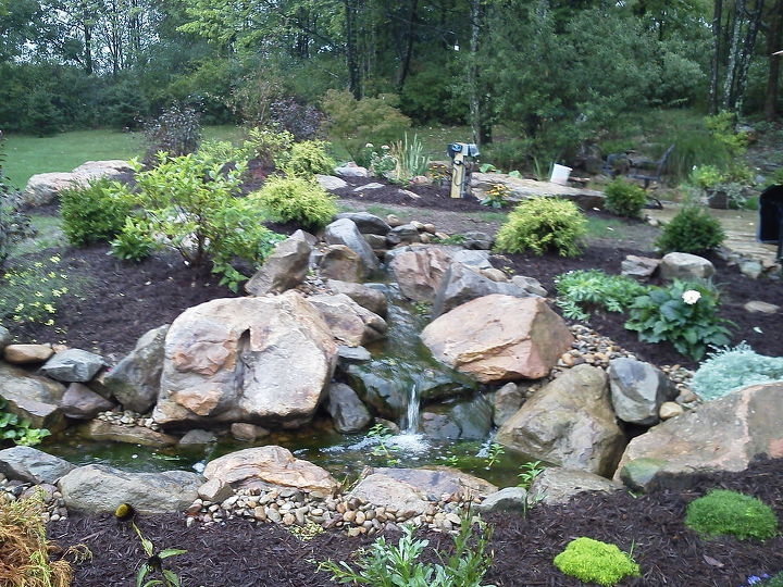 pondless waterfall between pool and patio areas