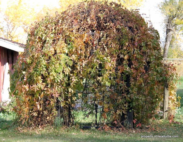 building a garden trellis, diy, gardening, woodworking projects, Fall