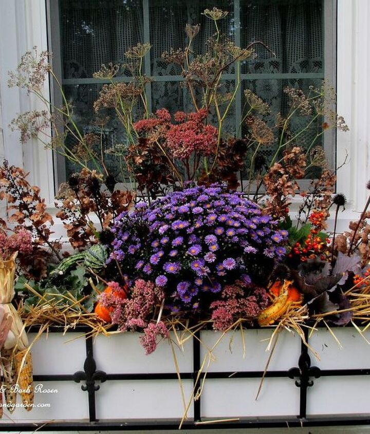 Small gourds, two ornamental kale, one aster, hay, and dried hydrangeas plus seed pods from coneflowers and bronze fennel make a low cost, but beautiful, Fall window box !http://pinterest.com/barbrosen/