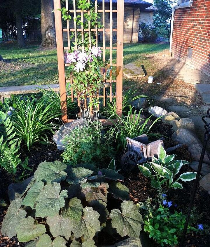 our garden in 2012, gardening