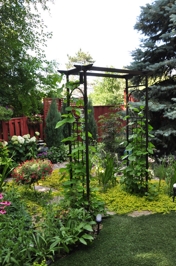 This is an arbor that leads into a small corner nook that is both half-shade (to the left) and full sun (on the right).