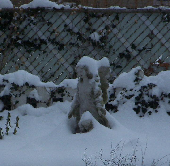 my secret garden through the four seasons, gardening, Six inch snow fall December 2013
