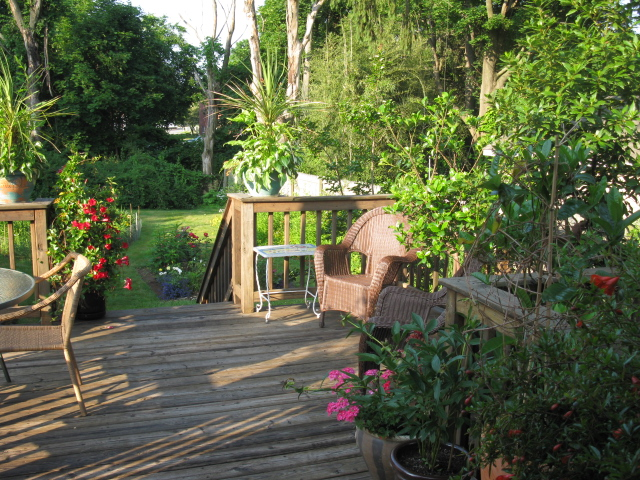 back yard, decks, outdoor living