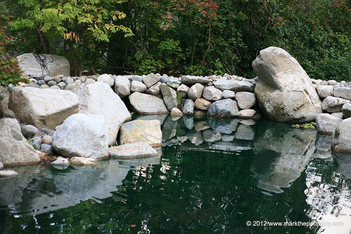 """The """"Swim Pond"""""""