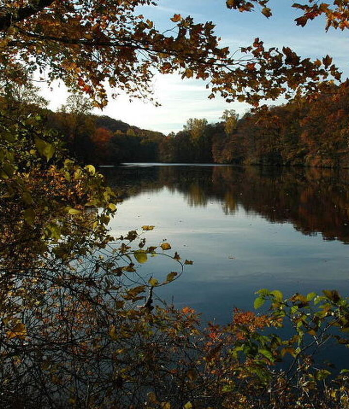 fall pond reflections, outdoor living, ponds water features