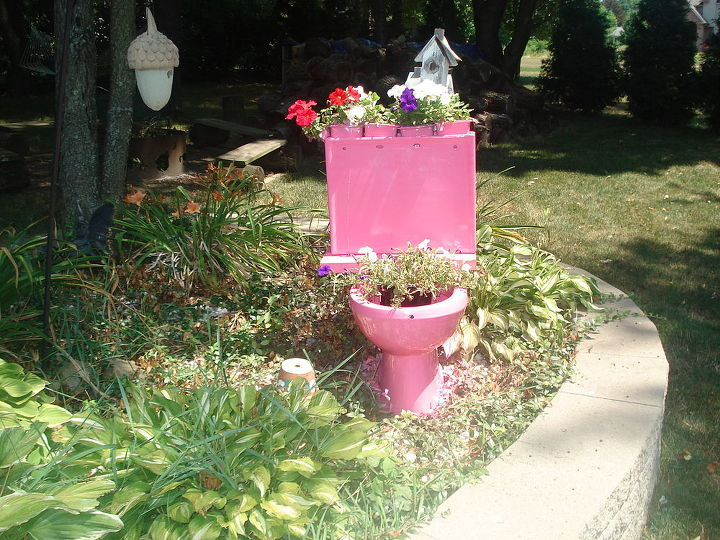 old toilet in to a flower holder, container gardening, flowers, gardening, repurposing upcycling, Will have to get bigger flowery flowers for the bowl But looks great in the back yard