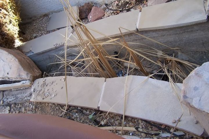 what can i plant, gardening, Trashed Water Feature