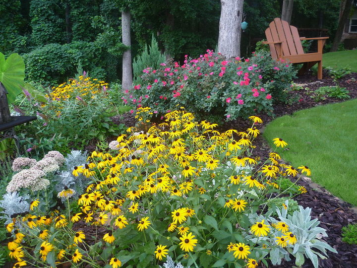 new to site and adding pictures on pc bare w me and i will show you my gardens and, gardening, front garden bed
