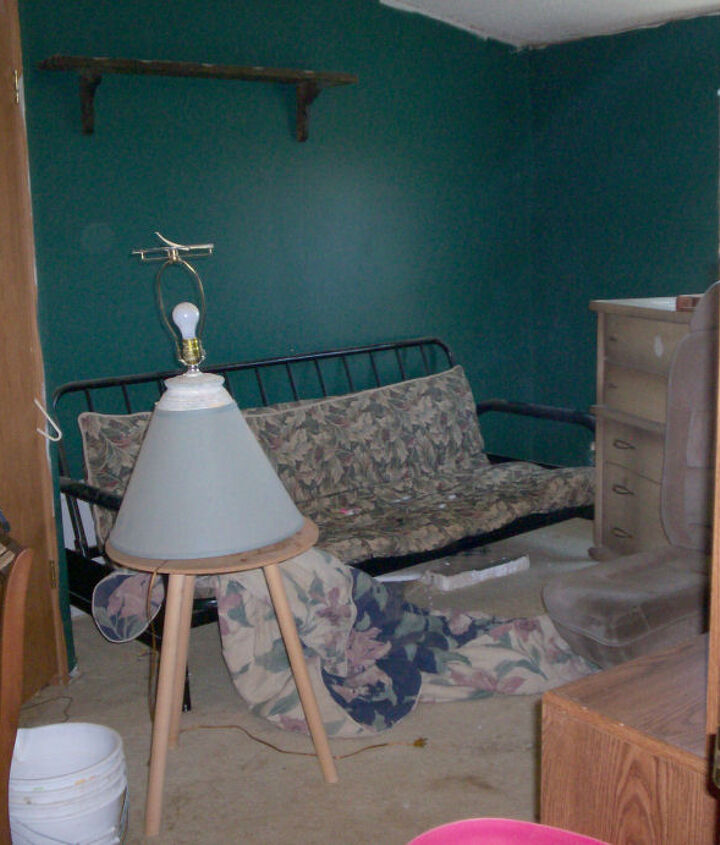 Before 1- carpet ruined, door has hole in it, walls- well look at next photo.