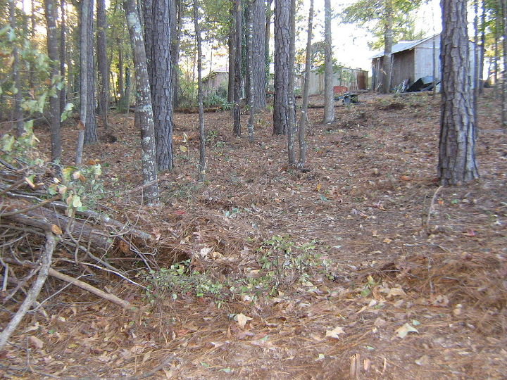 wooded slope needs attention, landscape, Looking up the slope toward storage room to the right of the swings