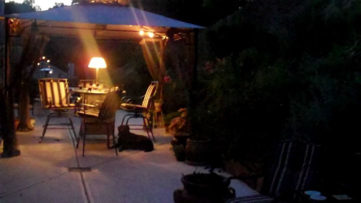 some pics of my back patio, gardening, patio
