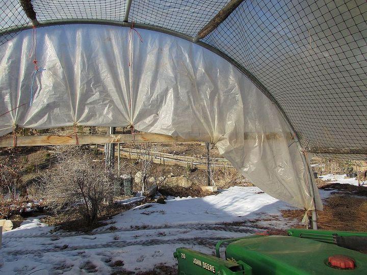 trampoline greenhouse, gardening, outdoor living
