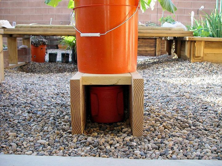 growing in containers, container gardening, gardening