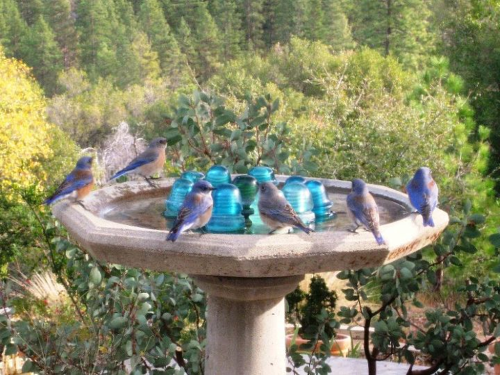 the ordinary and amazing birdbath, ponds water features, repurposing upcycling