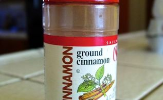 8 household uses for cinnamon, pest control, Photo of cinnamon by Adam Verwymeren courtesy of Networx com
