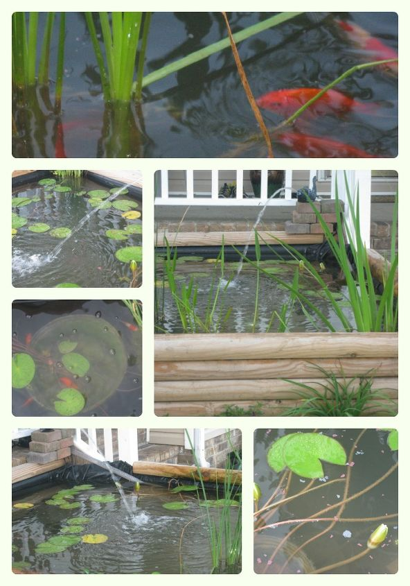 need helpful advice on winterizing a koi pond, outdoor living, ponds water features