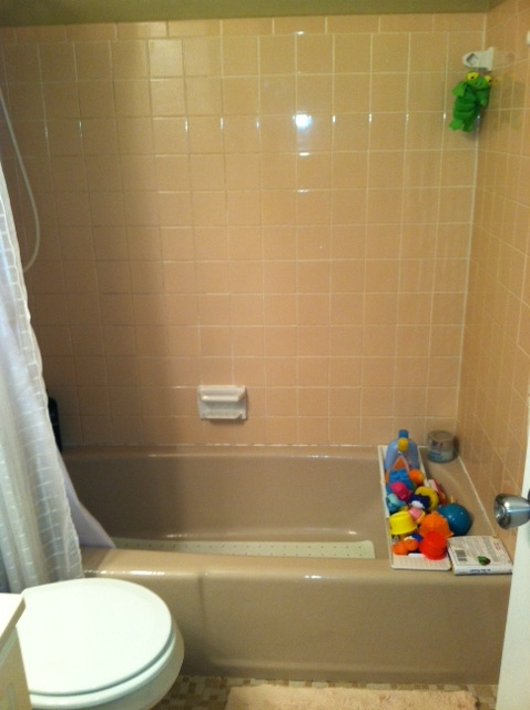 i really want to remodel our only full bath but don t have the money at this time so, tiling