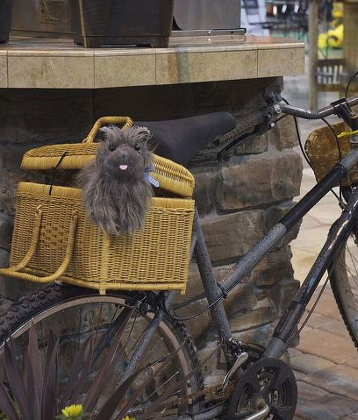 Poor Toto is trying to escape the basket on Elvira Gulch's bike.