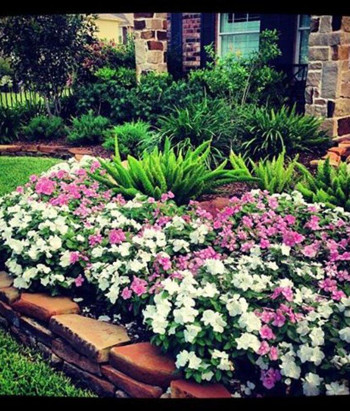 Our front flower beds/vincas...