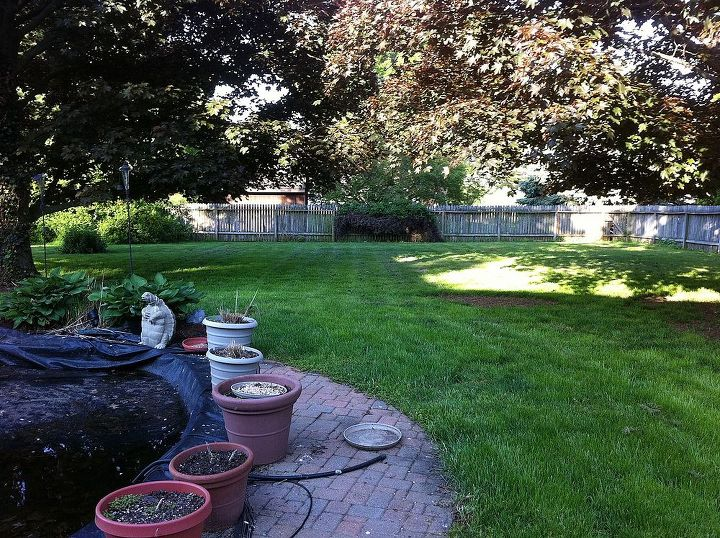 before and after photos, landscape, outdoor living, Before