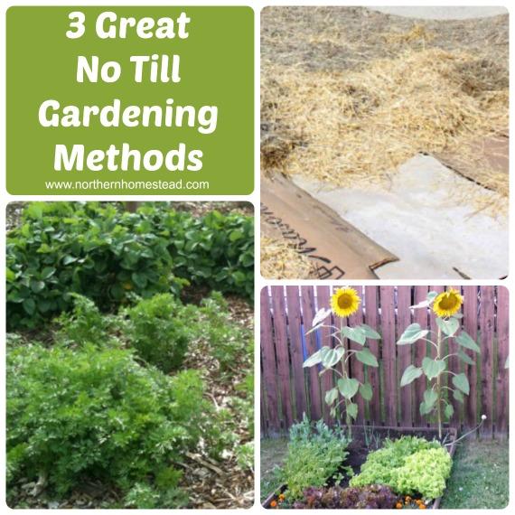 Compare Back to Eden Garden, Lasagna Garden, and Square Foot Garden ...