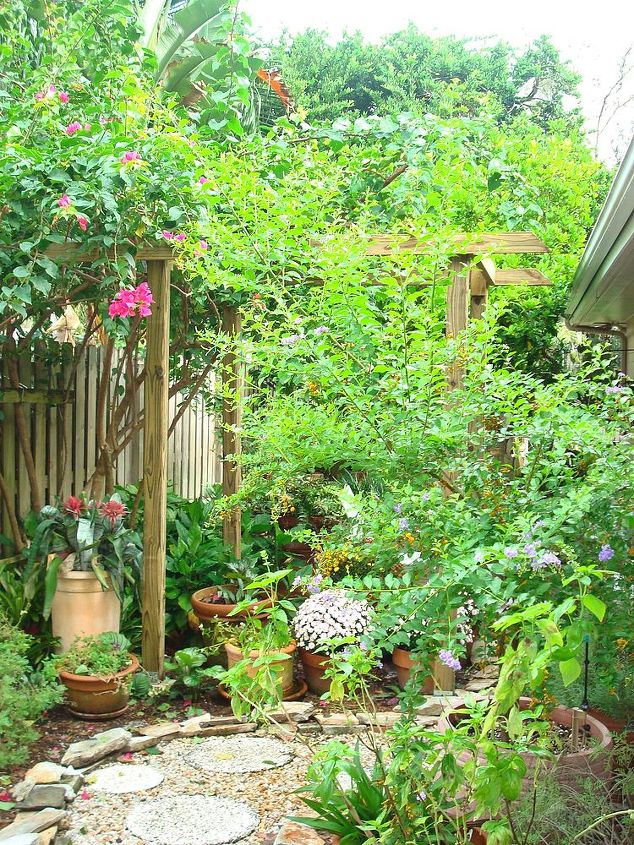 With the removal of the viburnum tree, support for the bougainvillea was needed.  (view from gate)