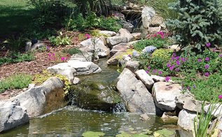 pond, gardening, outdoor living, ponds water features, July 2011