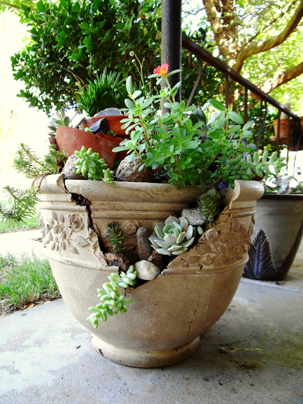 This is my 3rd broken pot garden.  I love the way they look.  Who would have thought a broken pot could be so pretty.  My brother gave me this broken pot.