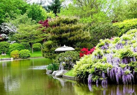 beautiful japanese gardens, gardening, Japanese Garden Design