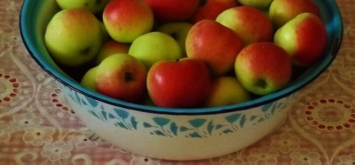 a is for apples, gardening