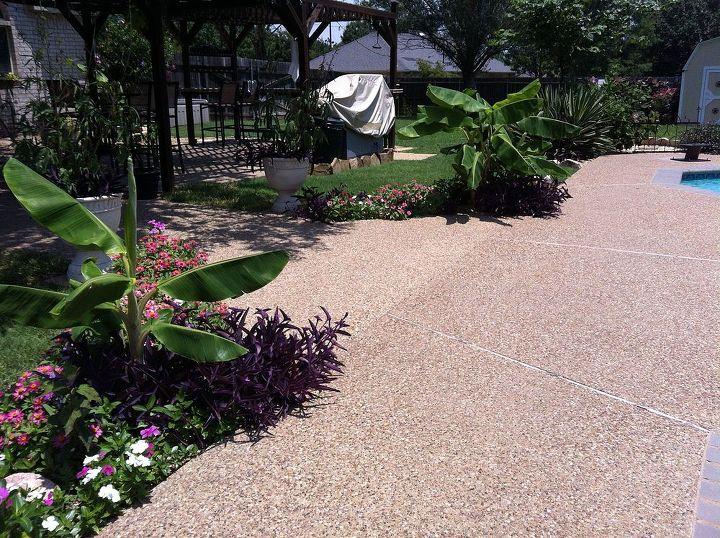 Backyard Paradise Hometalk