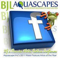 BJL Aquascapes