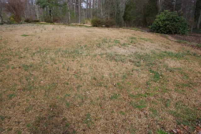centipede grass and weeds, gardening